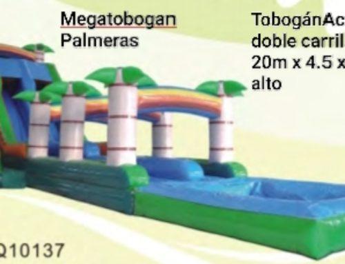 Megatobogán Palmeras doble carril + piscina